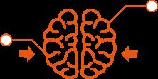 脳へのアプローチを