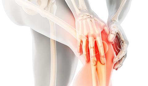 膝痛の考え方 イメージ写真